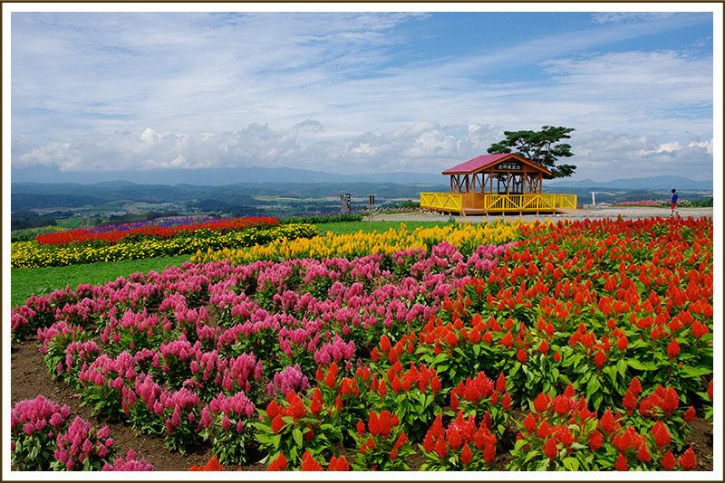 Furano Jam Garden